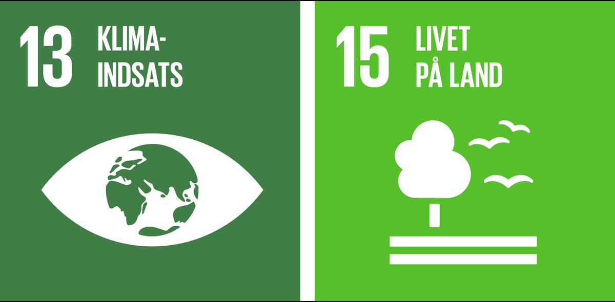 13 - Klimaindsats. 15 - Livet på land.